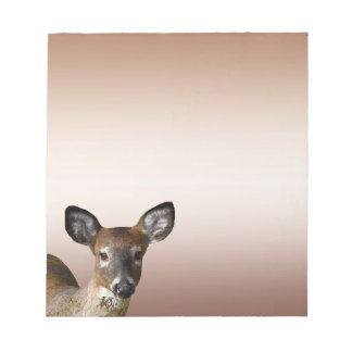 White-tailed Deer Notepad