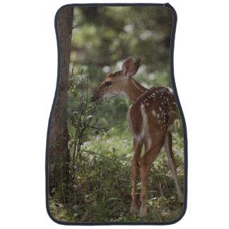 White-tailed Deer, Odocoileus virginianus, 2 Car Floor Mat