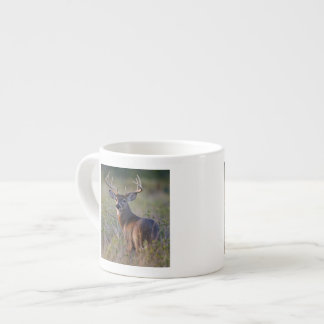 white-tailed deer Odocoileus virginianus) 2 Espresso Cup