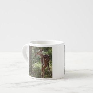 White-tailed Deer, Odocoileus virginianus, 2 Espresso Cup
