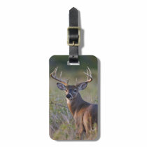 white-tailed deer Odocoileus virginianus) 2 Luggage Tag