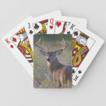 "white-tailed deer Odocoileus virginianus) 2 Playing Cards<br><div class=""desc"">white-tailed deer (Odocoileus virginianus) male with hard antlers,  in grassland,  Texas,  USA,  autumn   Larry Ditto / DanitaDelimont.com</div>"
