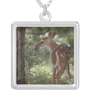 White-tailed Deer, Odocoileus virginianus, 2 Silver Plated Necklace