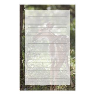 White-tailed Deer, Odocoileus virginianus, 2 Stationery
