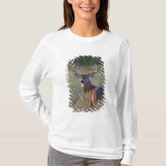 white-tailed deer Odocoileus virginianus) 2 T-Shirt