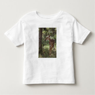 White-tailed Deer, Odocoileus virginianus, 2 Toddler T-shirt