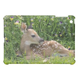 White-tailed deer (Odocoileus virginianus) Cover For The iPad Mini