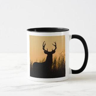white-tailed deer Odocoileus virginianus) Mug