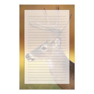 White-tailed Deer, Odocoileus virginianus, Stationery
