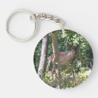 White-tailed Deer Single-Sided Round Acrylic Keychain