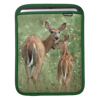 White-tailed Deer With her Spotted Fawn Sleeve For iPads