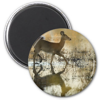 White Tailed Doe 2 Inch Round Magnet