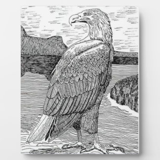 White Tailed Eagle Plaque