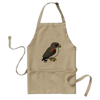 White-tailed Hawk Adult Apron