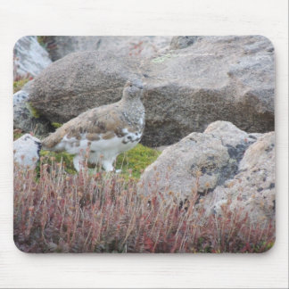 White tailed Ptarmigan Mouse Pad