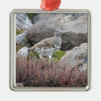White tailed Ptarmigan Christmas Ornament