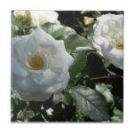 White Tea Roses Tiles
