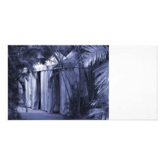 white tents behind palm fronds blue.jpg photo card