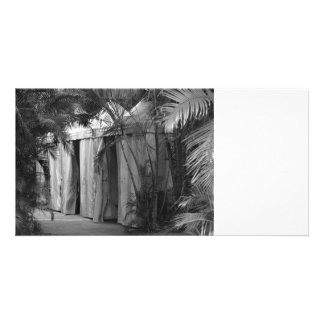 white tents behind palm fronds bw photo card