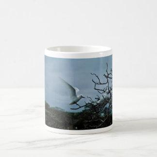 White terns perching on branches mug