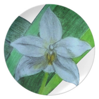 White Terrestrial Orchid Plate