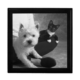 White Terrier and Cat Share the Love Jewelry Box