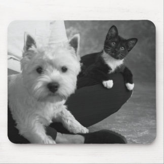 White Terrier and Cat Share the Love Mouse Pad