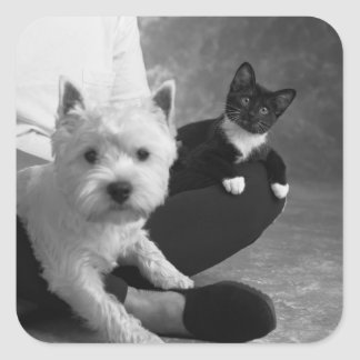 White Terrier and Cat Share the Love Square Sticker