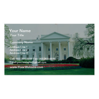White The White House, Washington, D.C., U.S.A. fl Double-Sided Standard Business Cards (Pack Of 100)