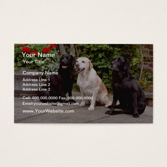 White Three Labrador retrievers sitting flowers Business Card