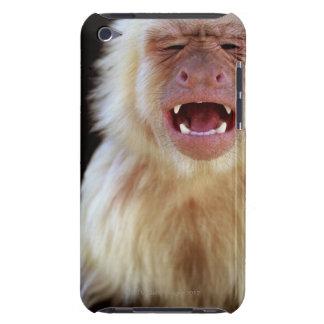 White-throated capuchin (Cebus capucinus) iPod Case-Mate Case