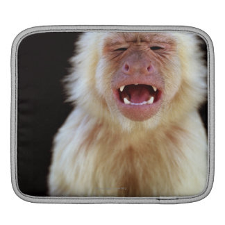 White-throated capuchin (Cebus capucinus) Sleeve For iPads