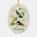 White Throated Mountain Gem Hummingbird Double-Sided Oval Ceramic Christmas Ornament
