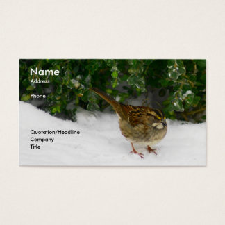 White-throated Sparrow Business Card
