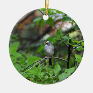 White Throated Sparrow Ceramic Ornament