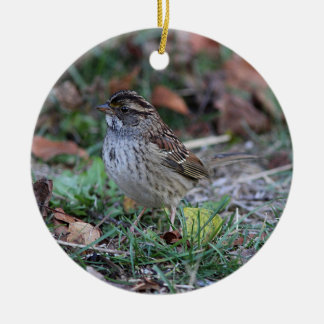 White-throated Sparrow Ceramic Ornament