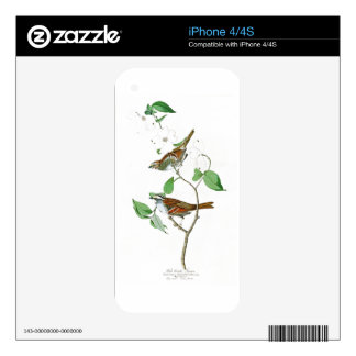 White Throated Sparrow John Audubon Birds America Decals For The iPhone 4S