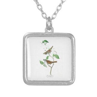 White Throated Sparrow John Audubon Birds America Square Pendant Necklace