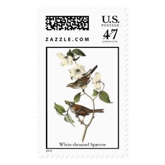 White-throated Sparrow - John Audubon Postage