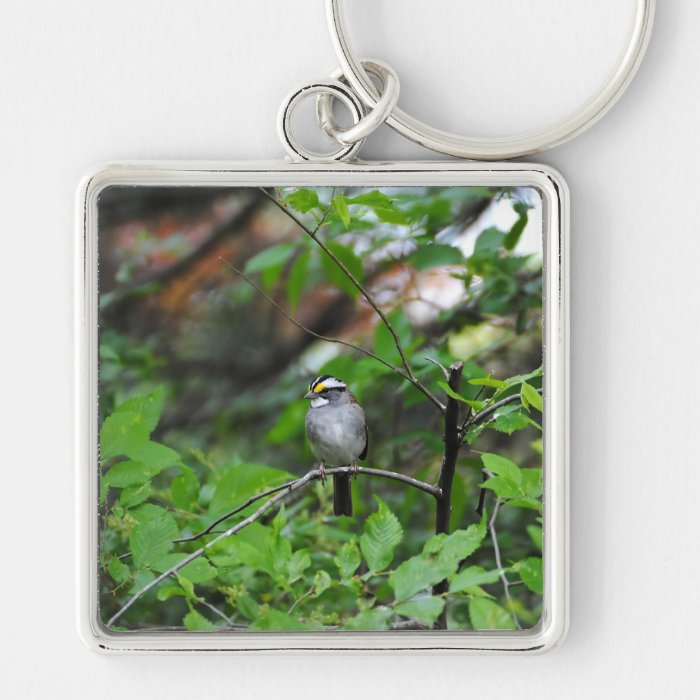 White Throated Sparrow Keychain