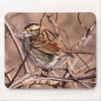 White-throated Sparrow Mouse Pad