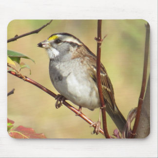 White-throated Sparrow Mousepad