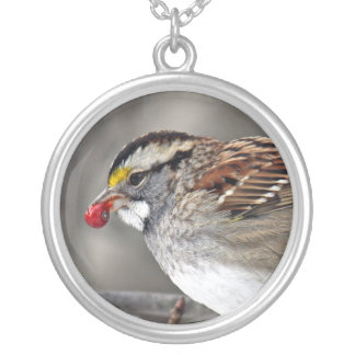 White-throated Sparrow Necklace