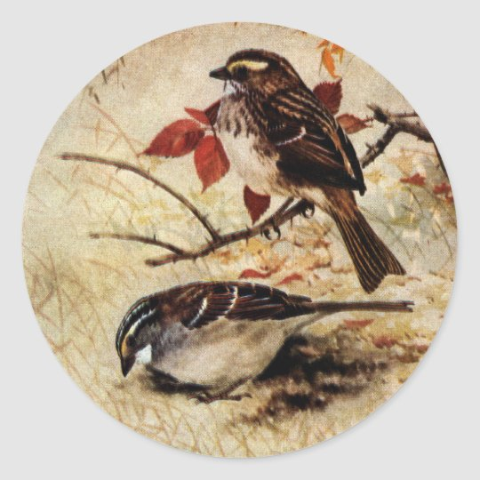 White-Throated Sparrows and Fall Leaves Classic Round Sticker