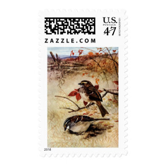 White-Throated Sparrows and Fall Leaves Postage