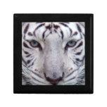 white-tiger2-10x10 gift boxes