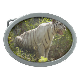 White tiger 007 oval belt buckle