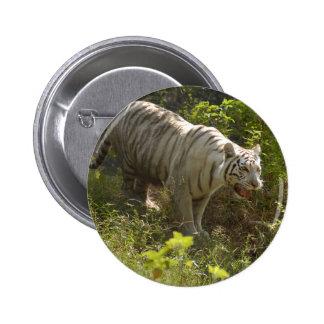 White tiger 009 pinback button