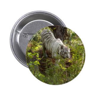 White tiger 010 pinback button