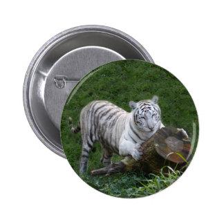 White tiger 015 pins
